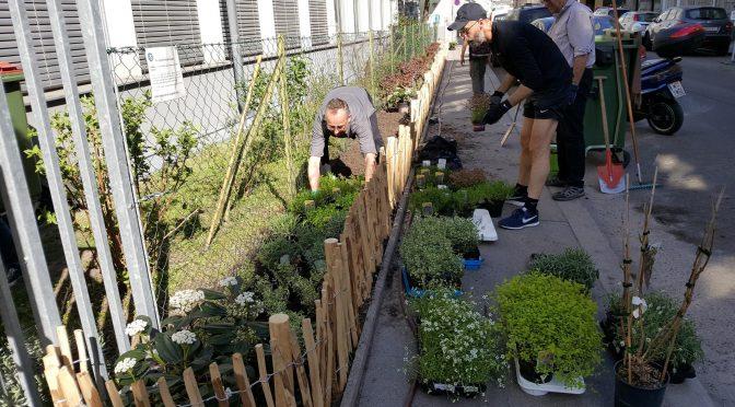 Schulvorgartenpflege im Frühjahr 2018